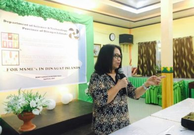 MSMEs in Dinagat trained on Food Innovation and Dev